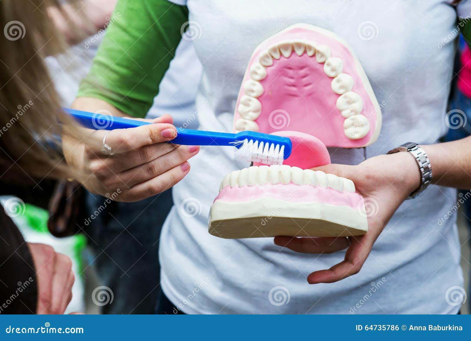 Rappresentazione della donna come pulire correttamente i denti con lo spazzolino da denti e radrizzare