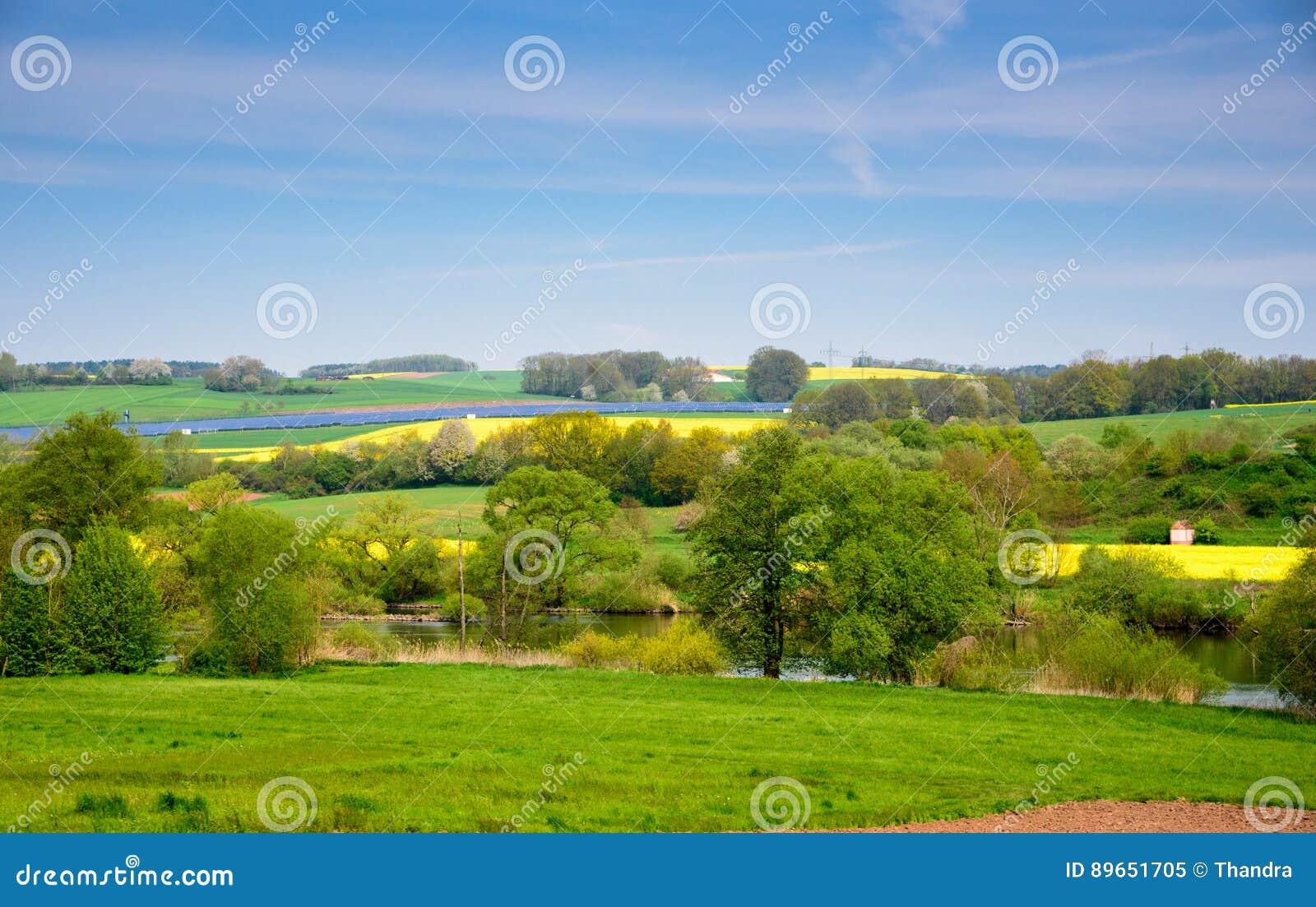 Rapssamengelbgrünfeld im Frühjahr, abstraktes natürliches eco Saisonblumenhintergrund