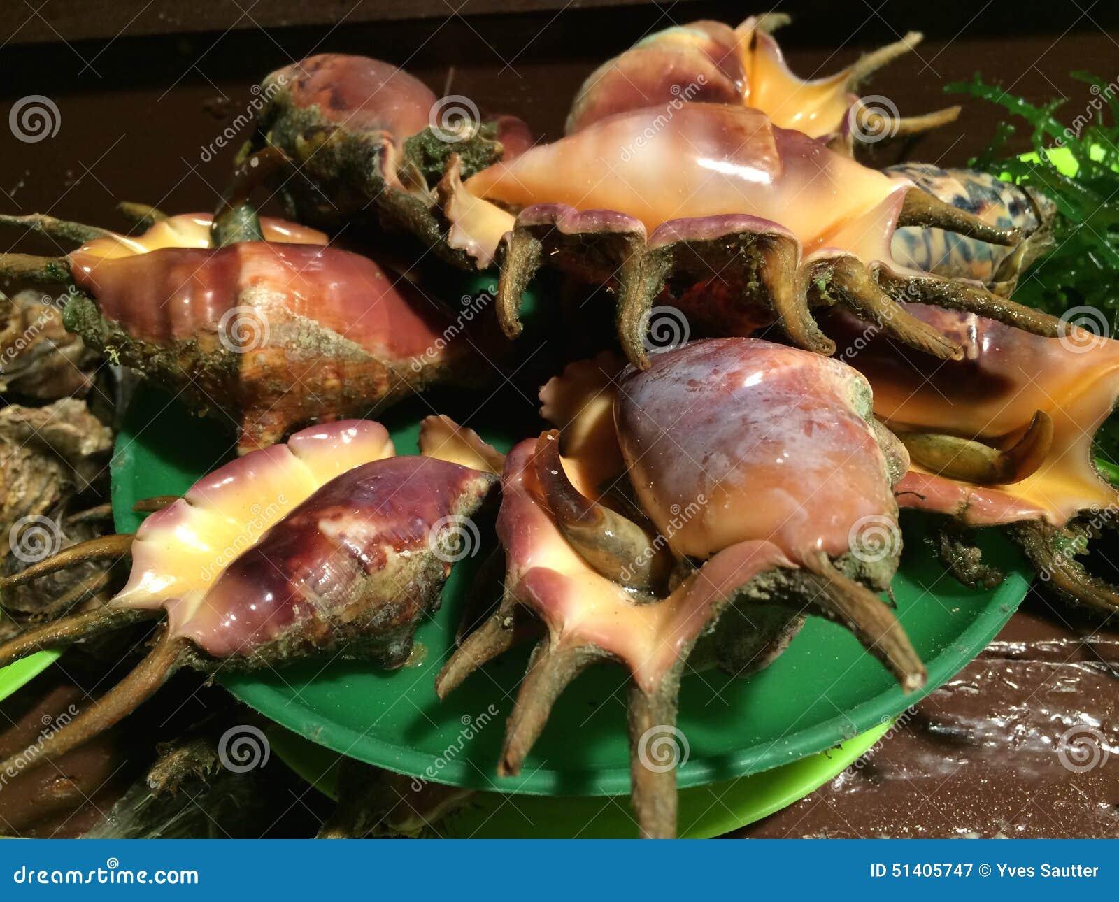 Rare Shellfish Fish Market Alona Beach Panglao