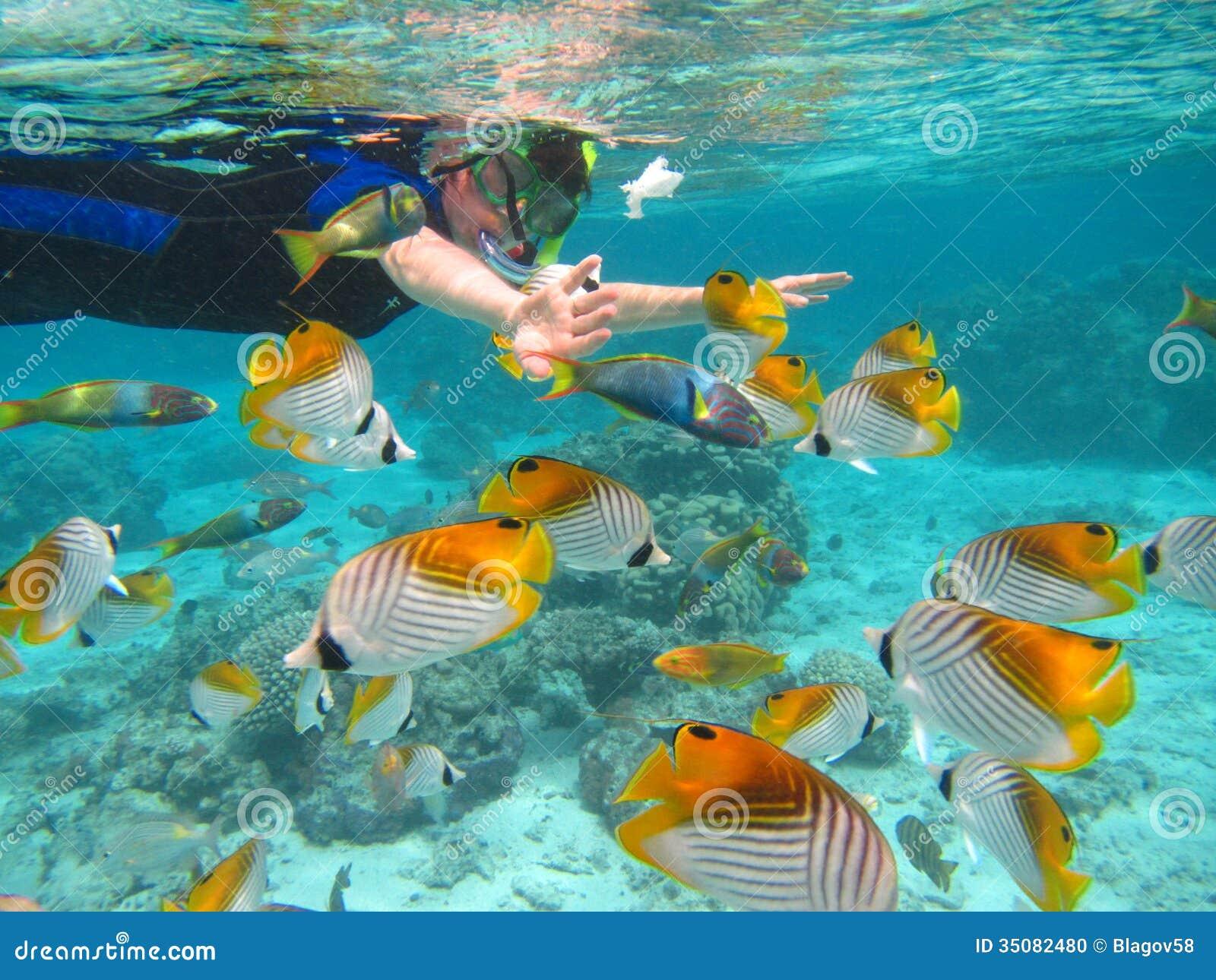 Rarotonga onderwater