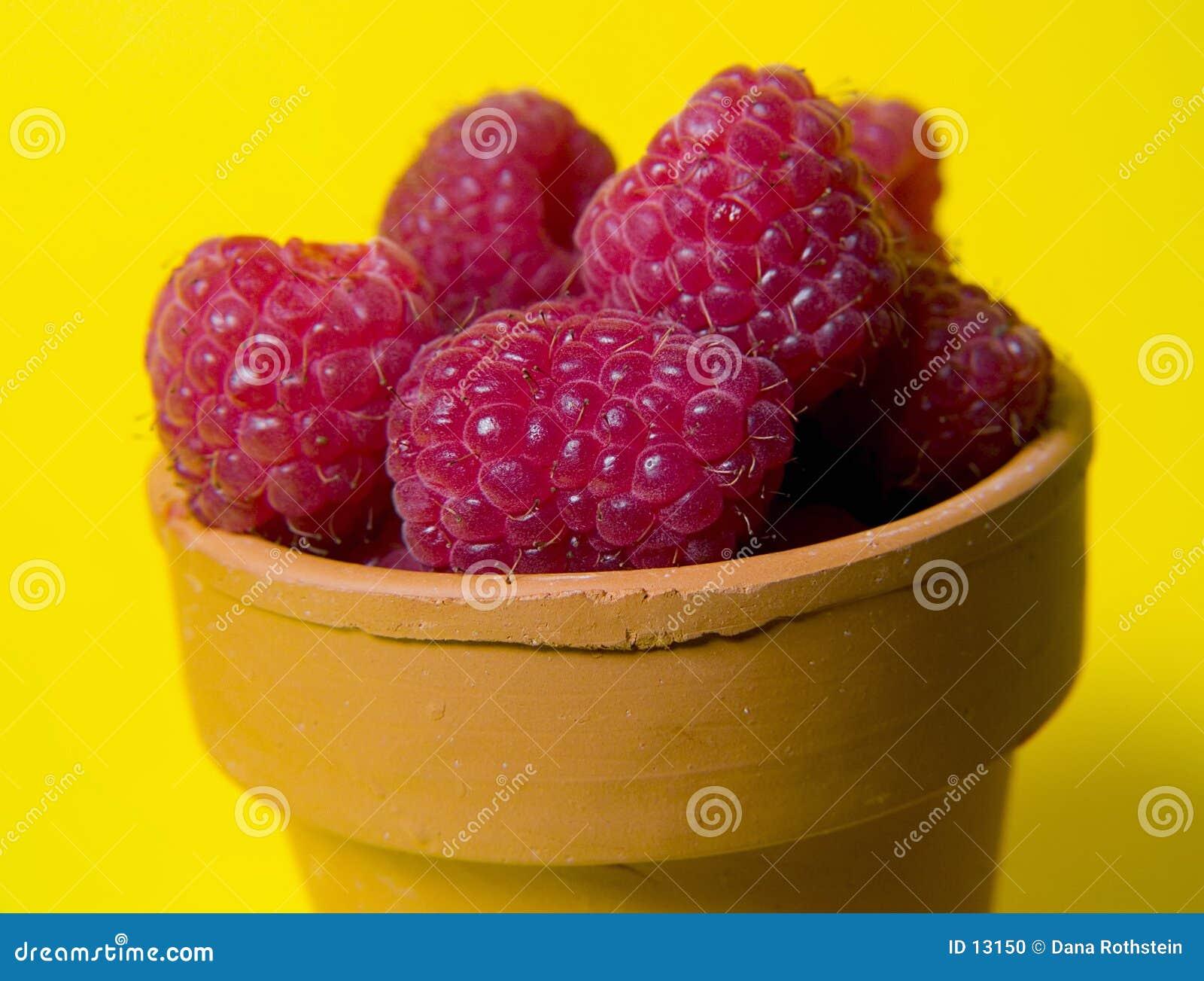 Rasberries garnków
