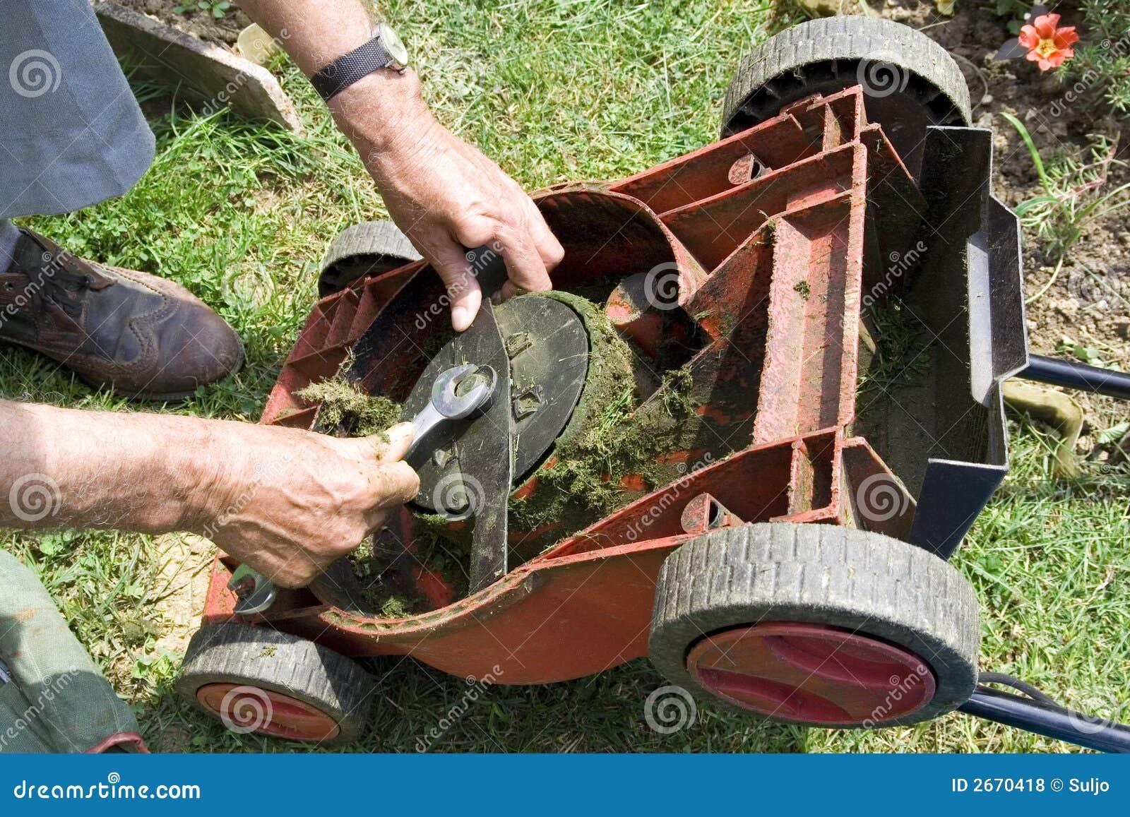 Rasenmähmaschine