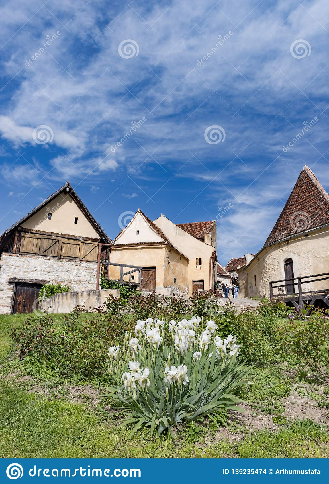 Rasnov, Romania - May, 2017: Spring view of the Rasnov citadel inner countryard, in Brasov county (Romania), with blooming white