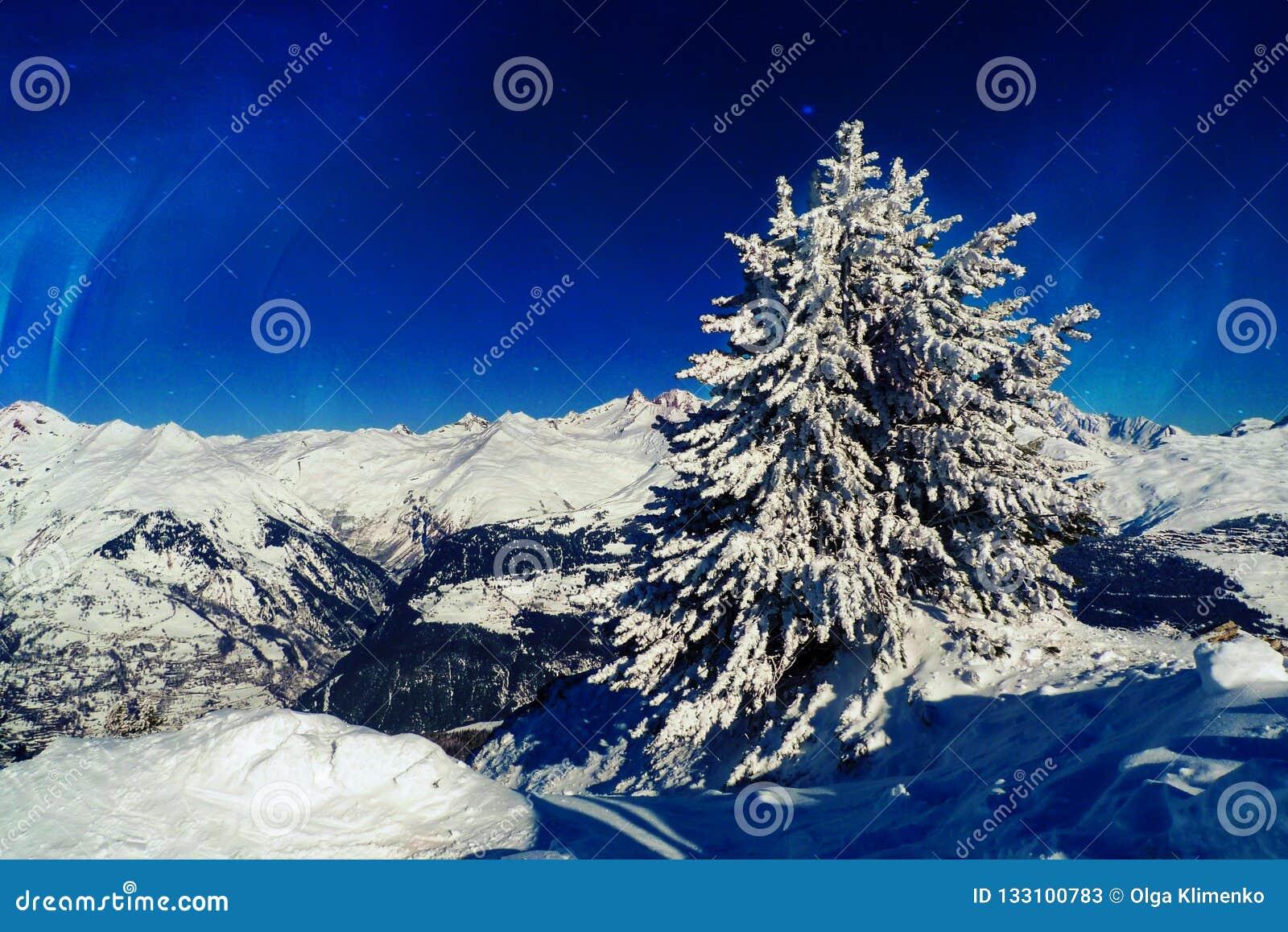 Raspa de arenque en la nieve encima de una montaña contra un cielo azul