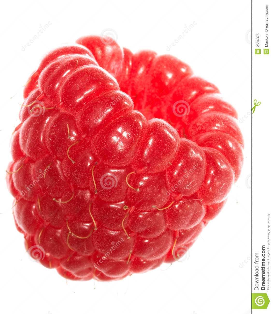 Raspberry Royalty Free Stock Photo - Image: 2584375