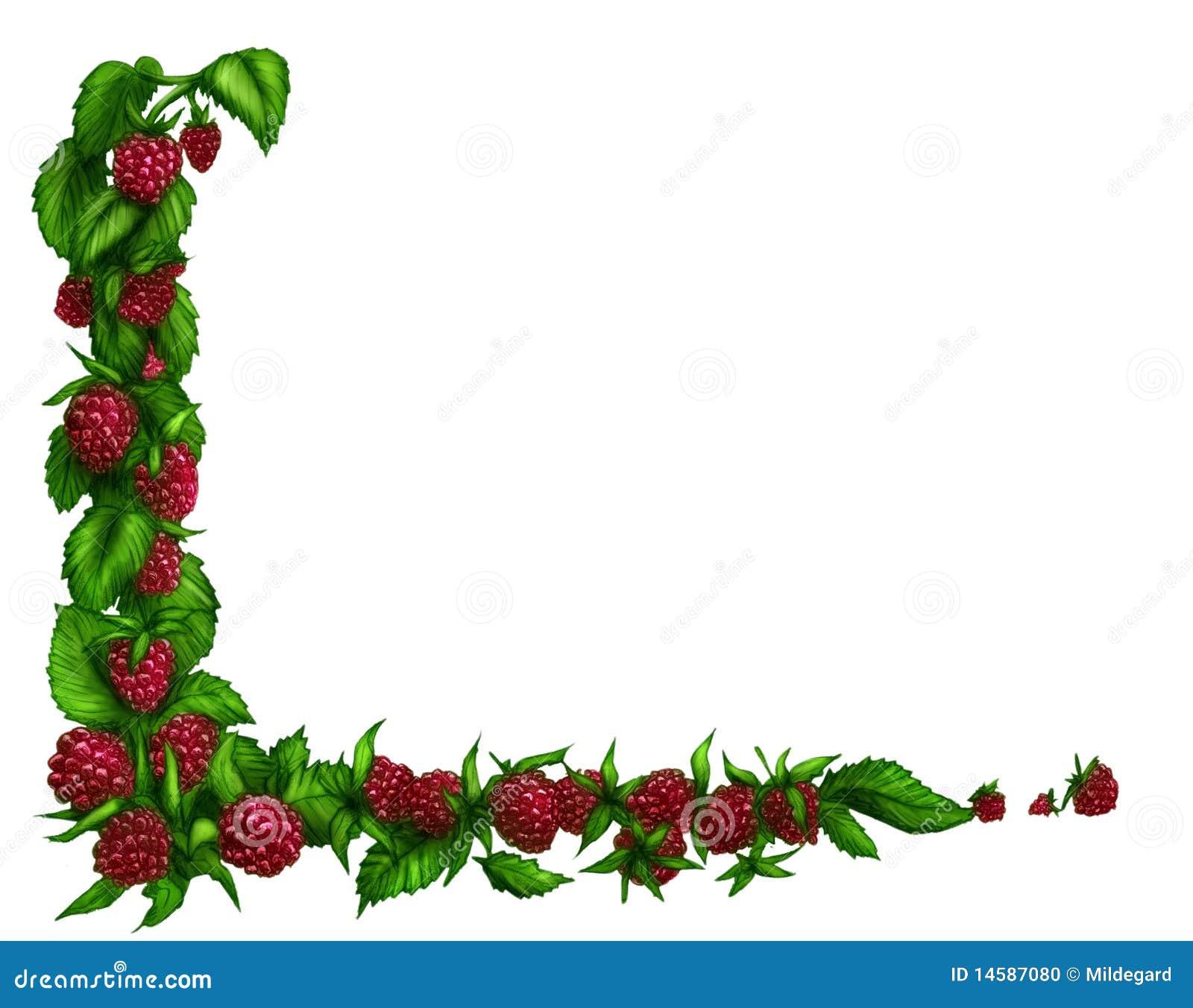 Photo Page: Raspberry Border Stock Photo