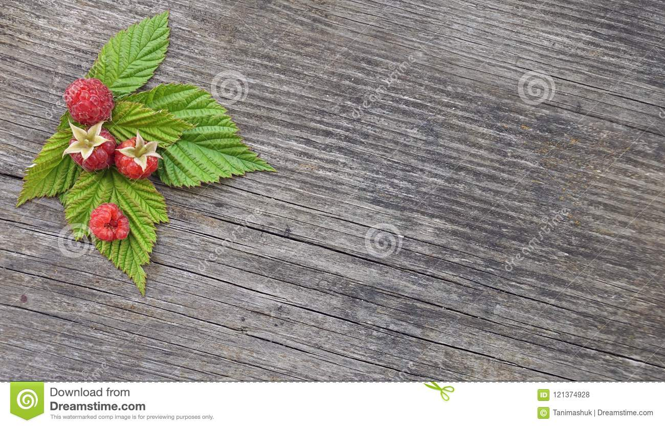 Raspberry frame background