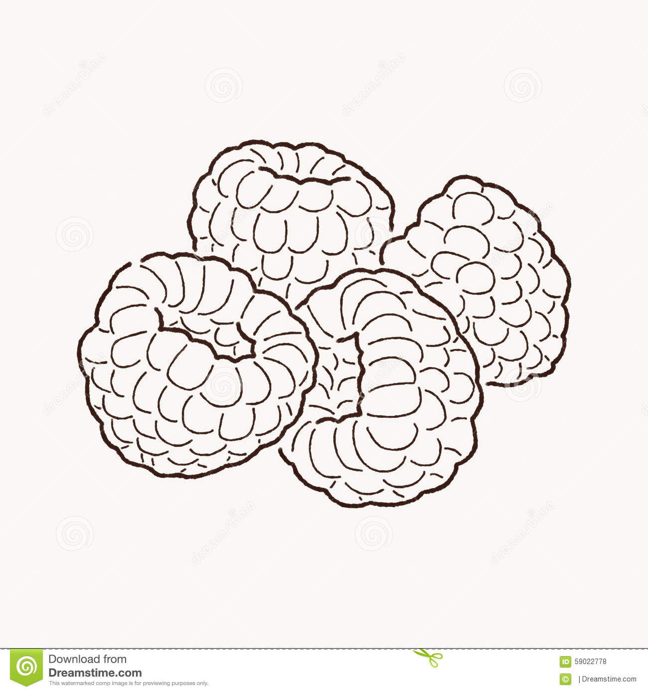 Raspberry Clipart Black And White Royalty free stock photos: raspberry ...