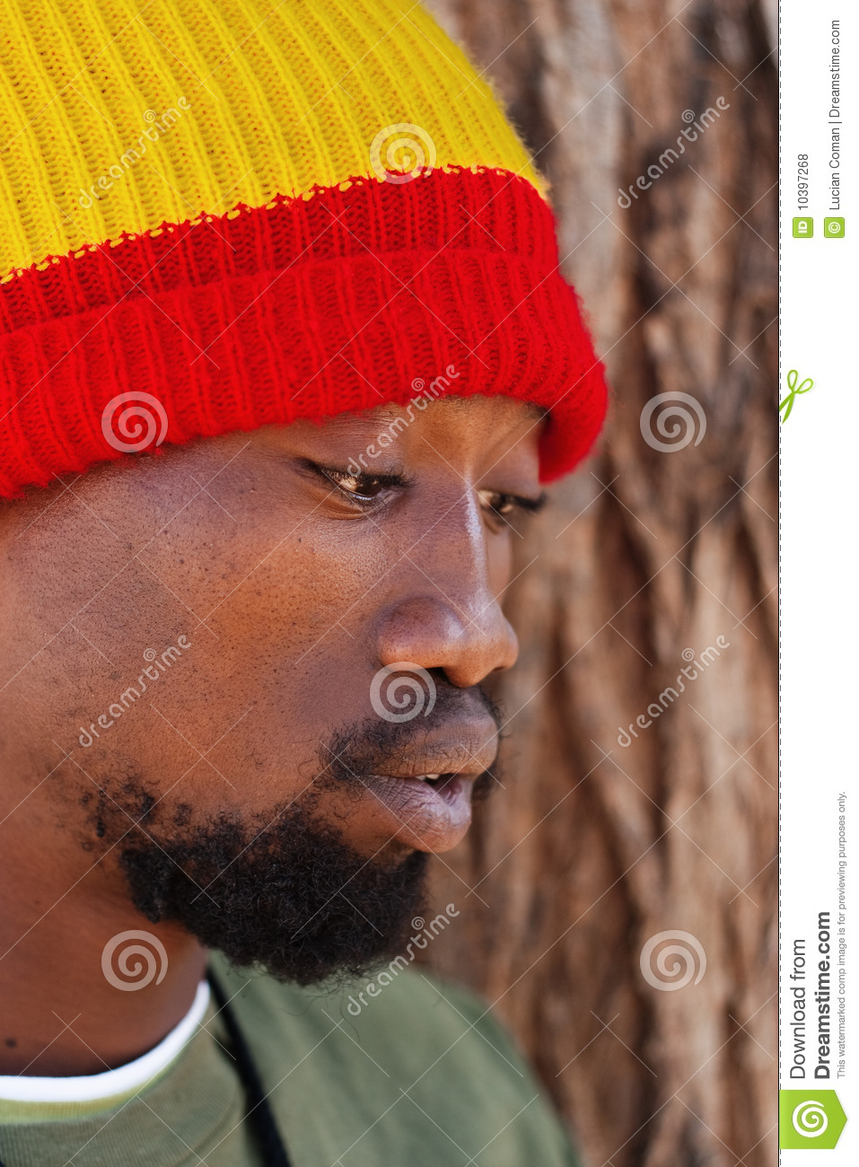 Rastafarian man stock photo  Image of rastafarianism - 10397268