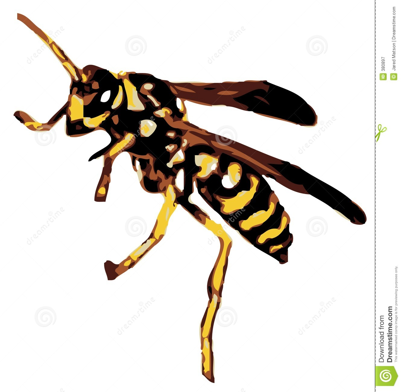 free clip art yellow jacket - photo #20