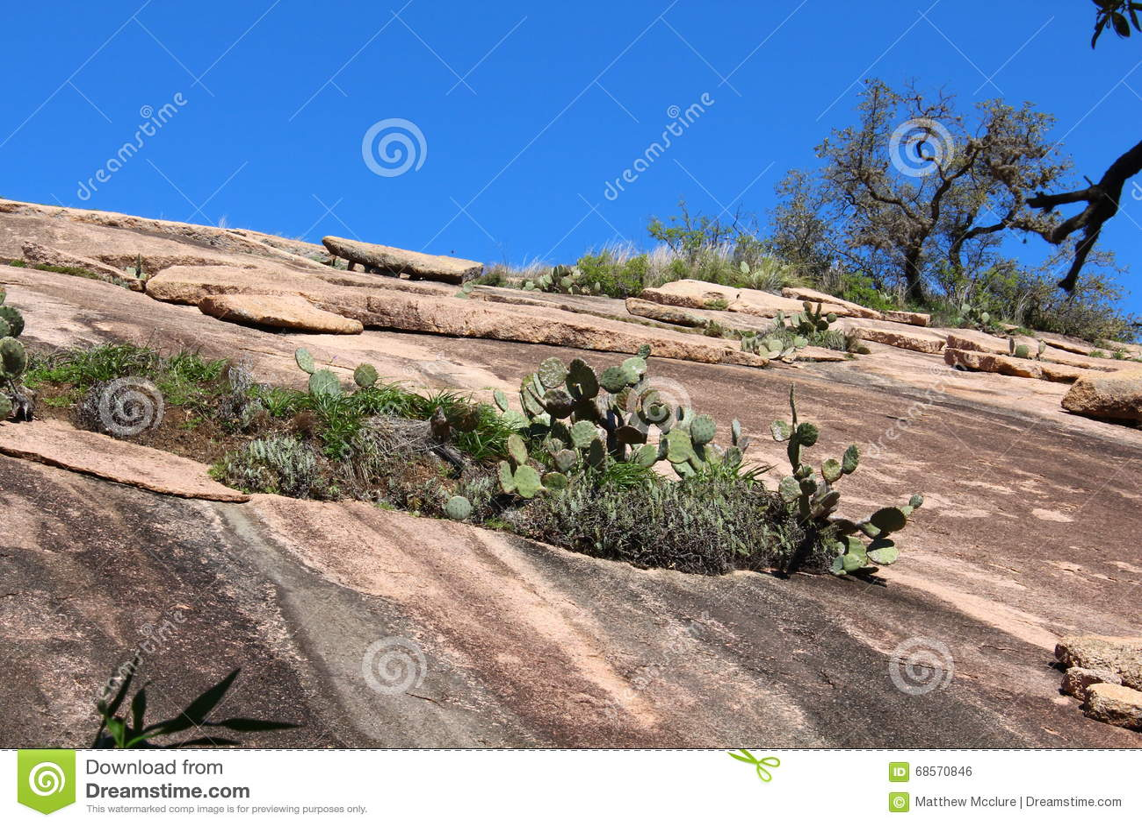 Rastro de la cumbre en la roca Enchanted