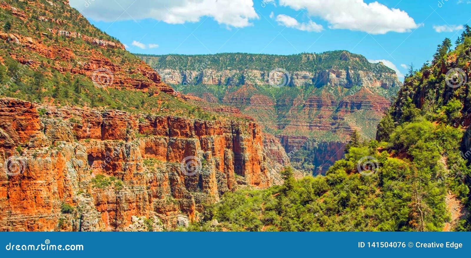 Rastro del norte de Kaibab en el parque nacional de Grand Canyon, Arizona, los Estados Unidos de América