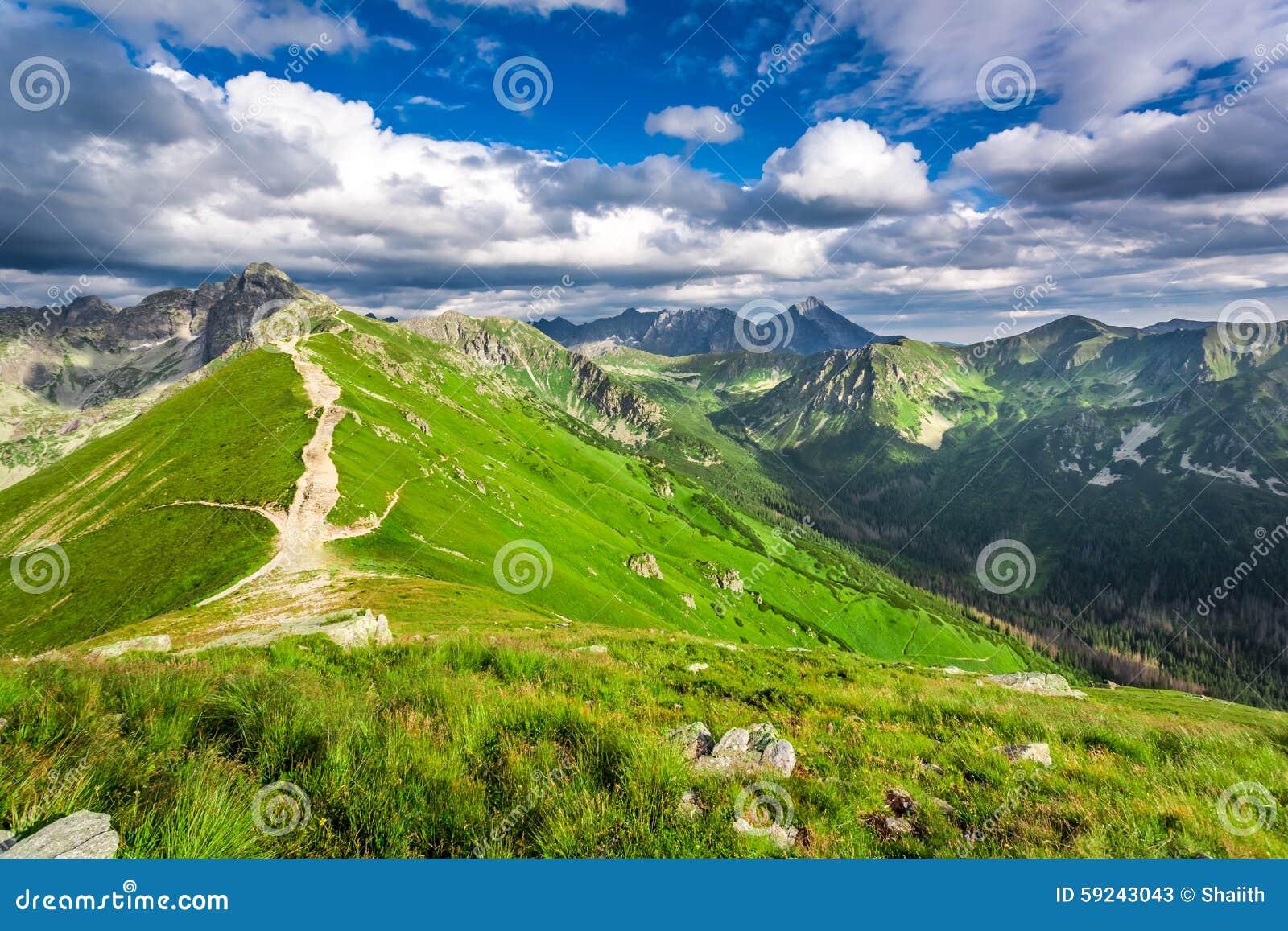 Rastro en las montañas