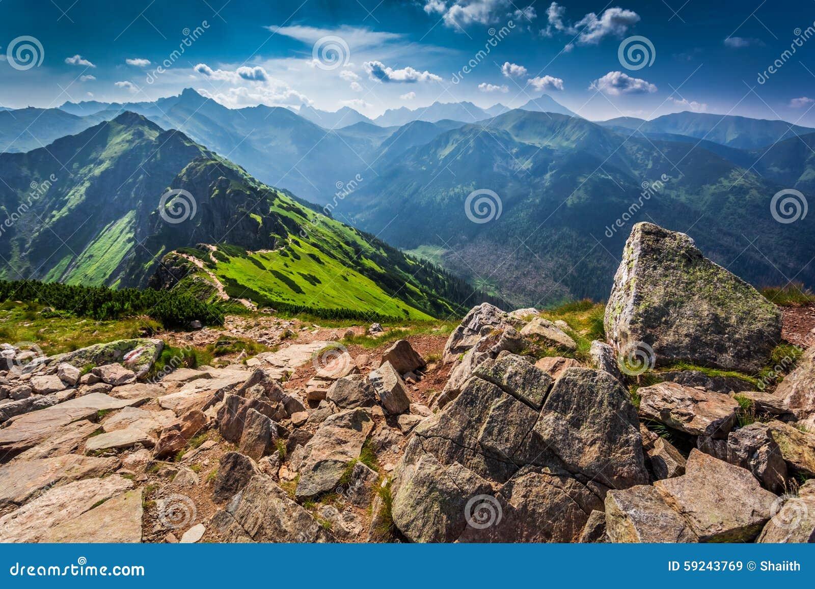 Download Rastro En Las Montañas De Tatras En El Día Soleado Imagen de archivo - Imagen de roca, verde: 59243769