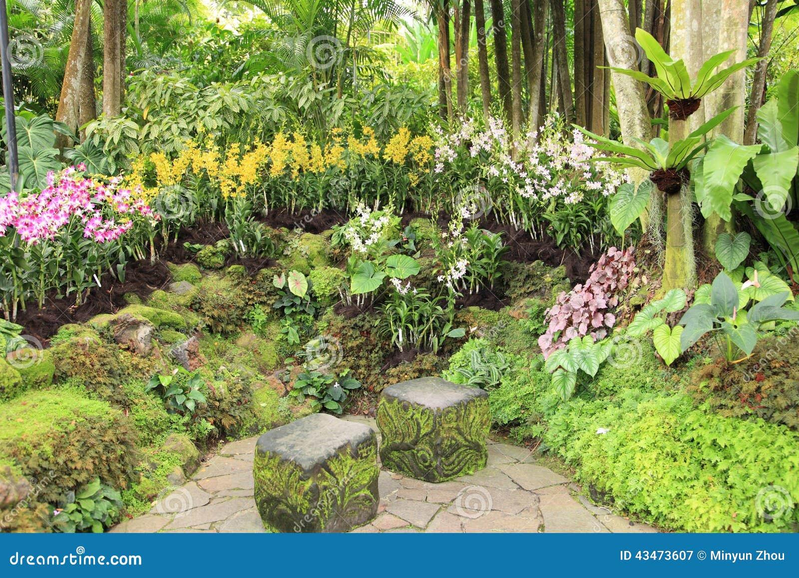 Rastro En Los Jardines Botánicos De Singapur Imagen de archivo ...