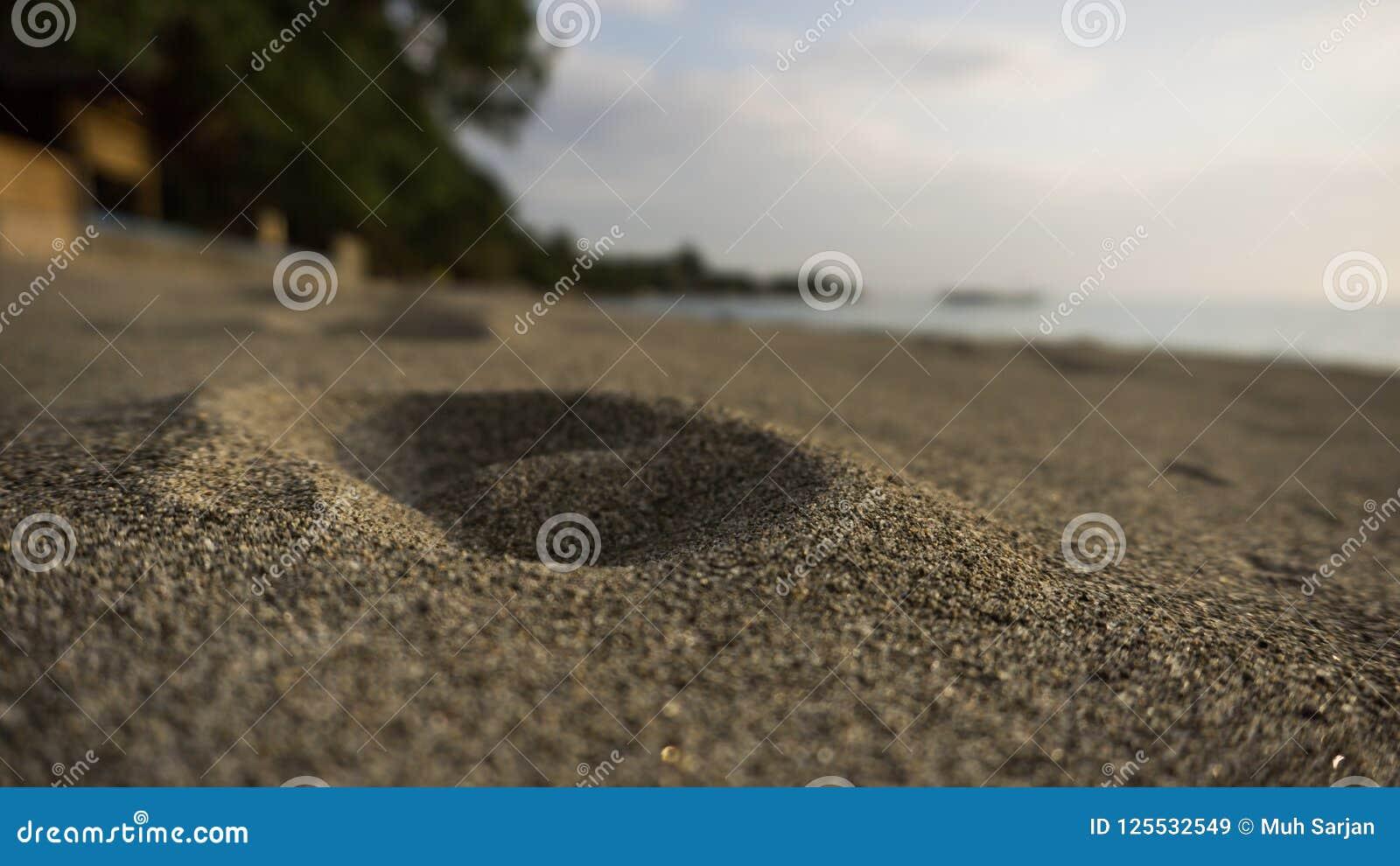 Rastro humano en la arena de la playa