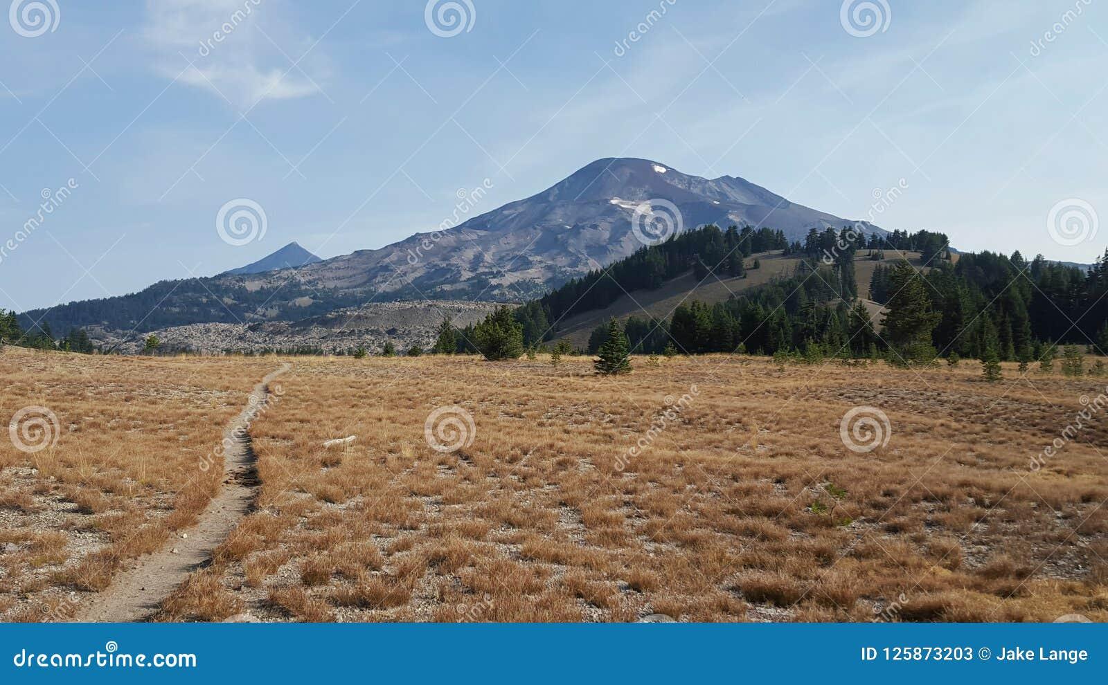 Rastro pacífico de la cresta que pasa a través de hierba seca