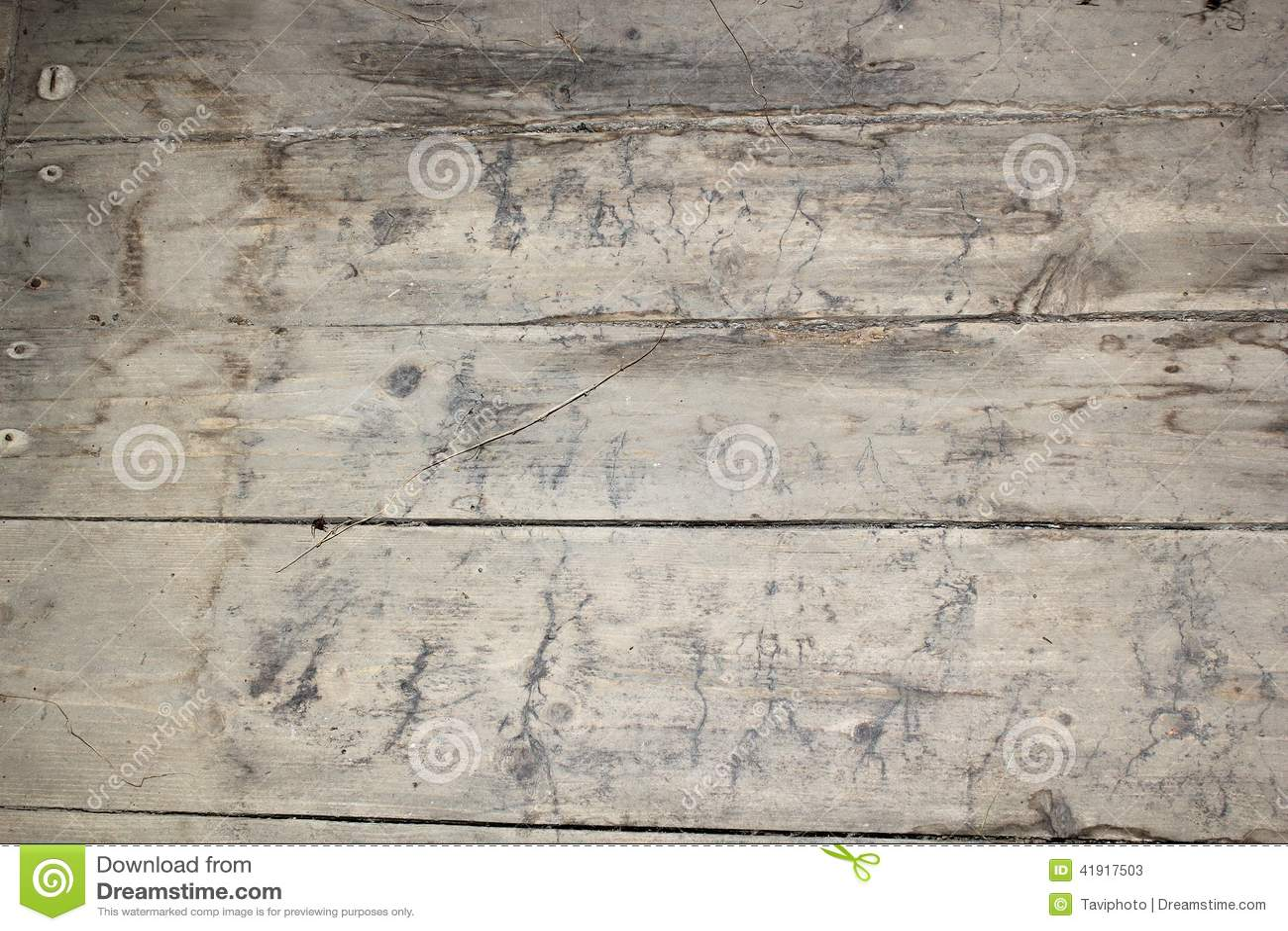 Rastros del micelio en piso del sótano
