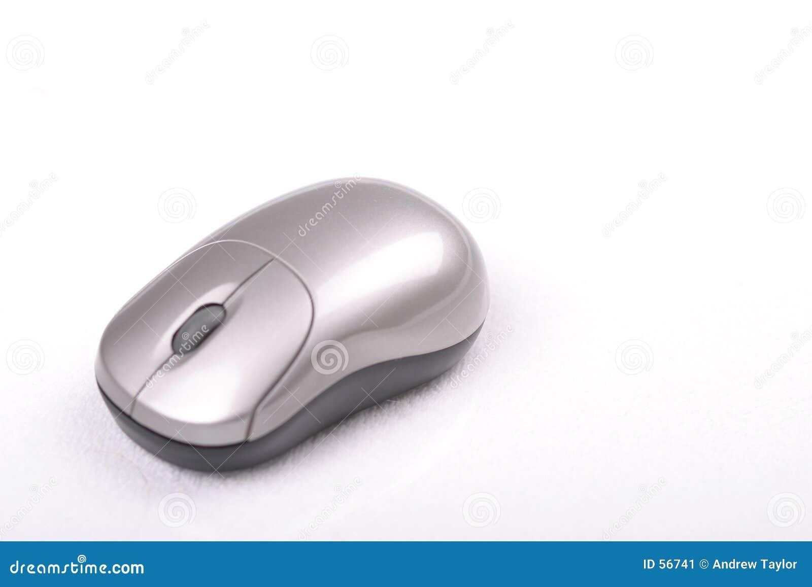 Ratón dejado