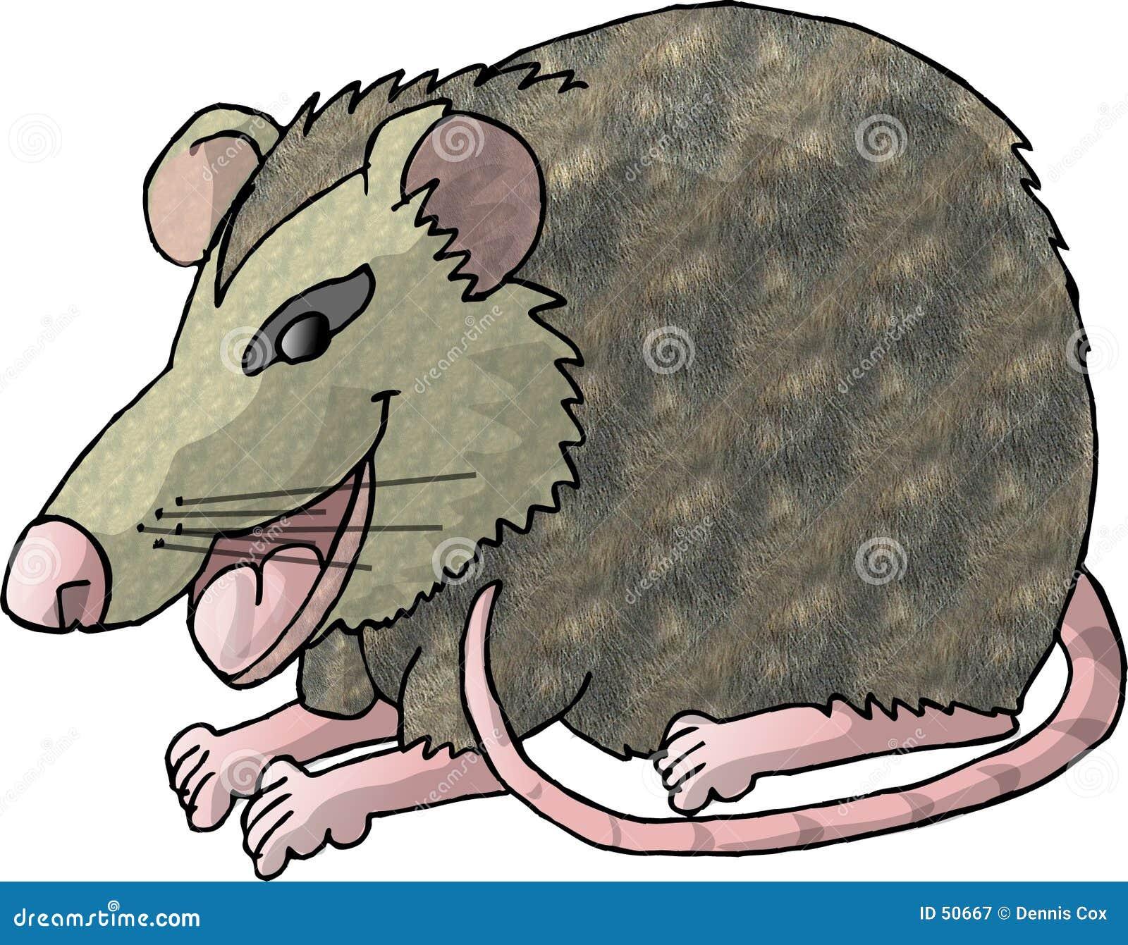 Download Rat illustration stock. Illustration du amusement, arrière - 50667