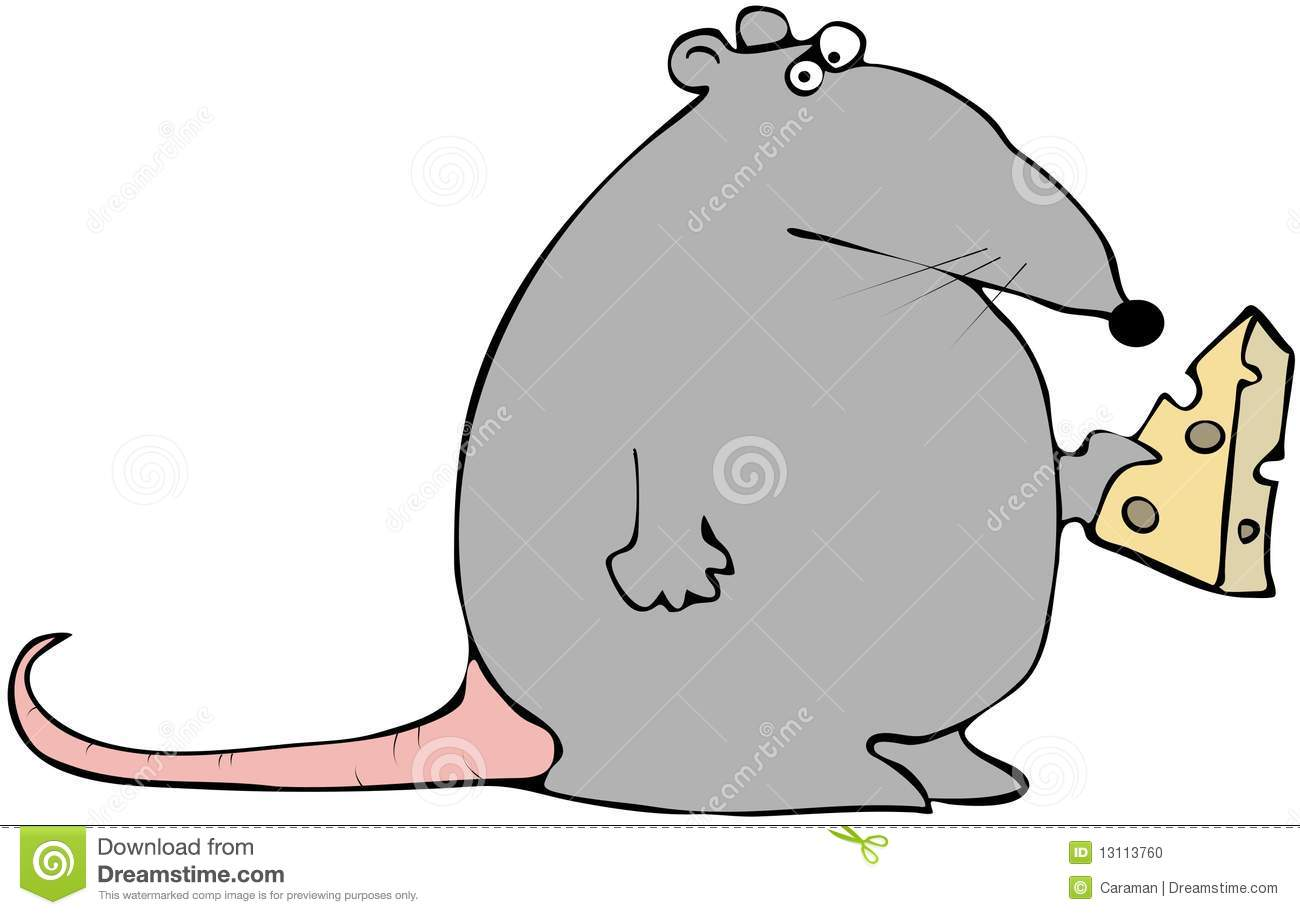Rat With Cheese Stock Illustration Illustration Of Rodent