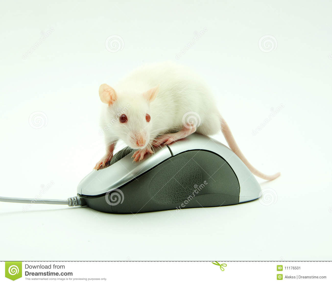 how to delete rat from computer