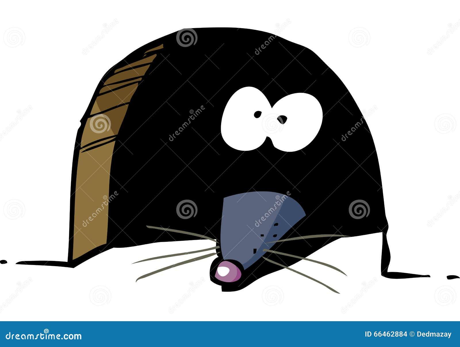 Rato no furo
