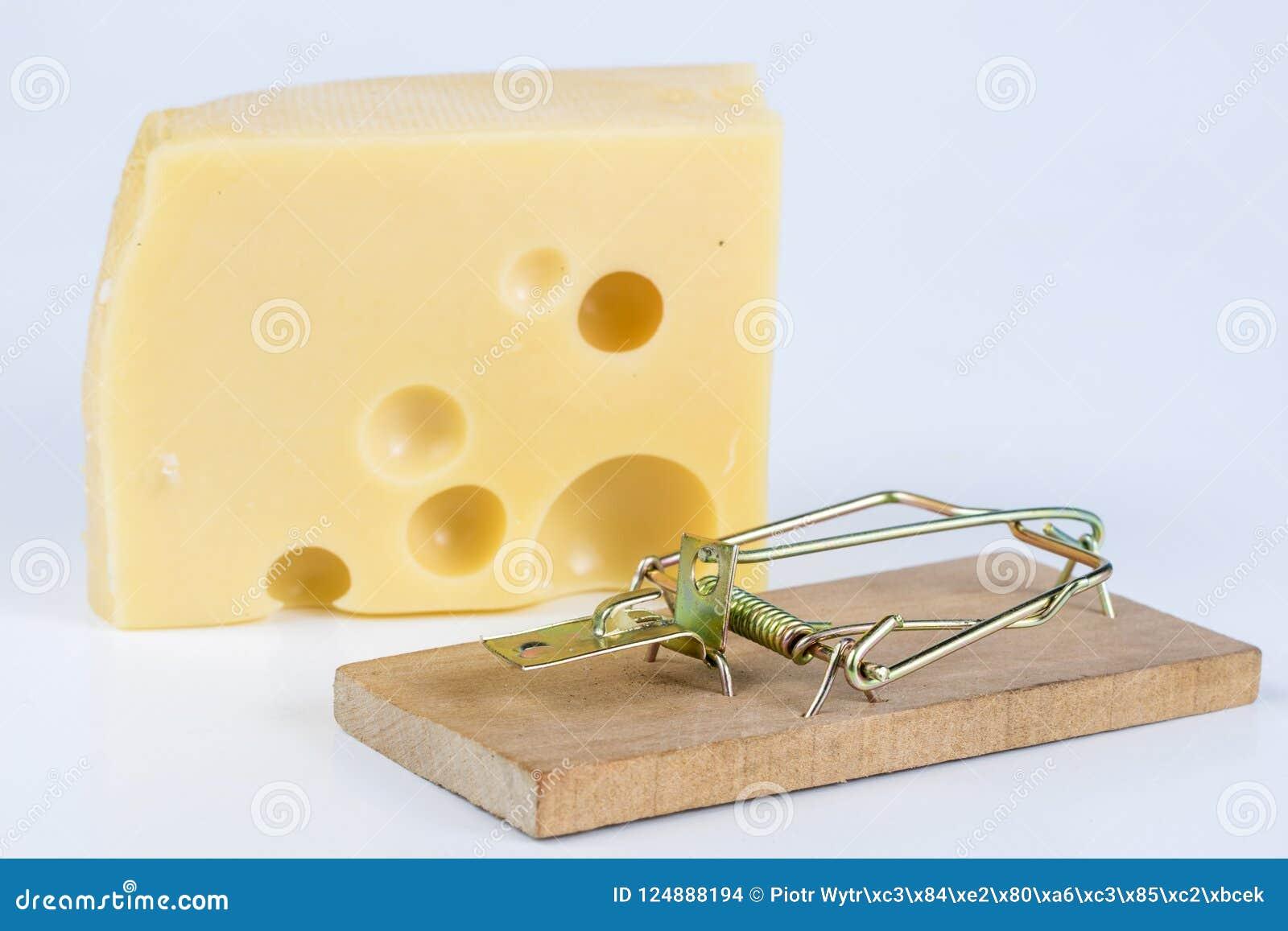 Ratonera en una tabla blanca Trampa con queso amarillo como cebo