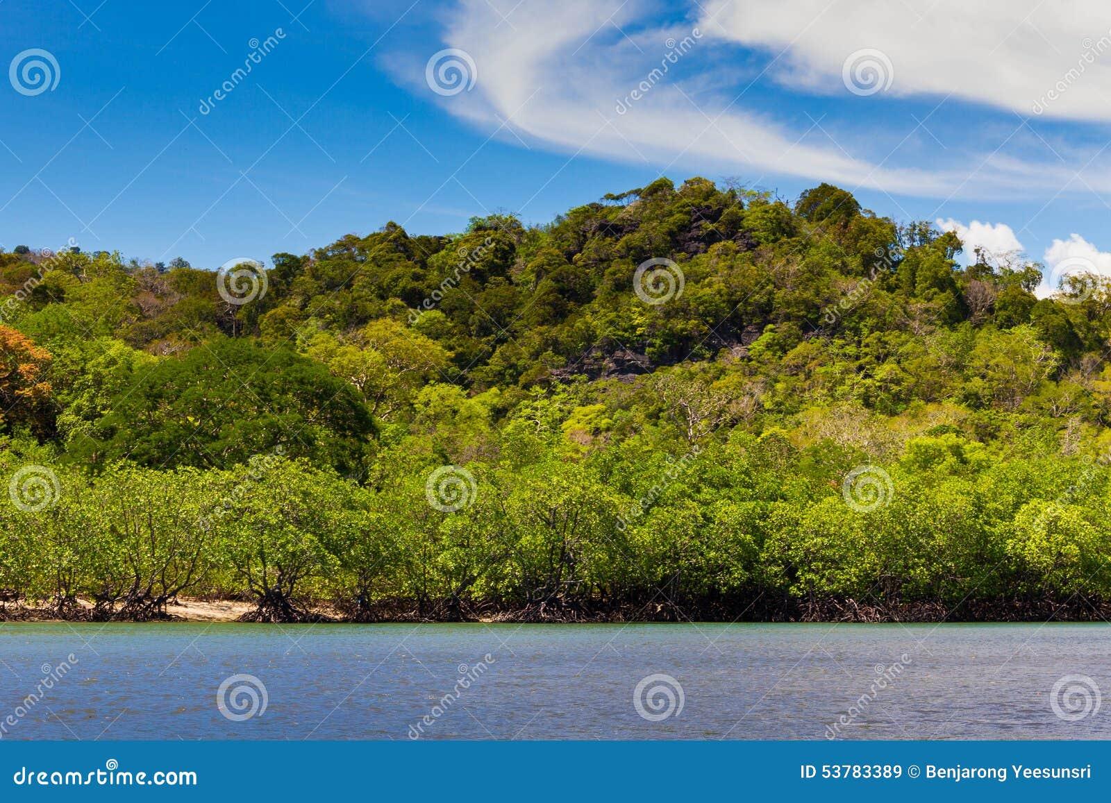 Ravee wyspa, Koh Ravee, Satun prowincja Tajlandia