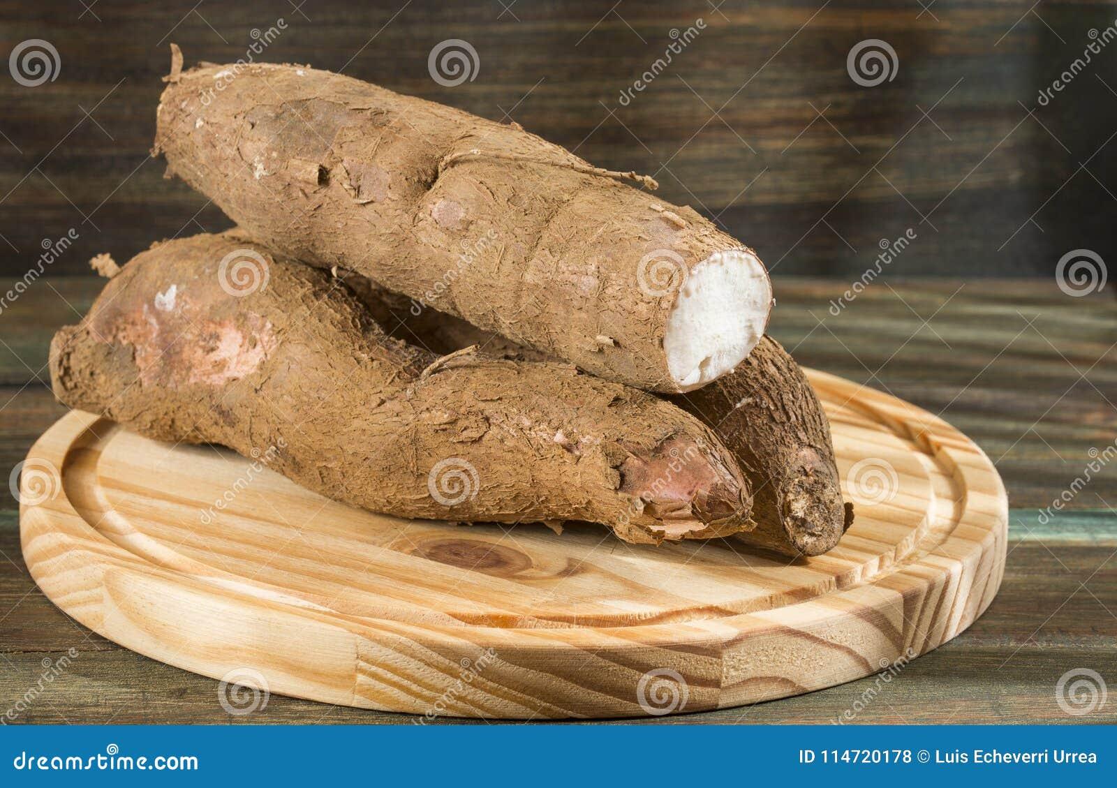 Cassava Raw Tuber - Manihot Esculenta Stock Photo