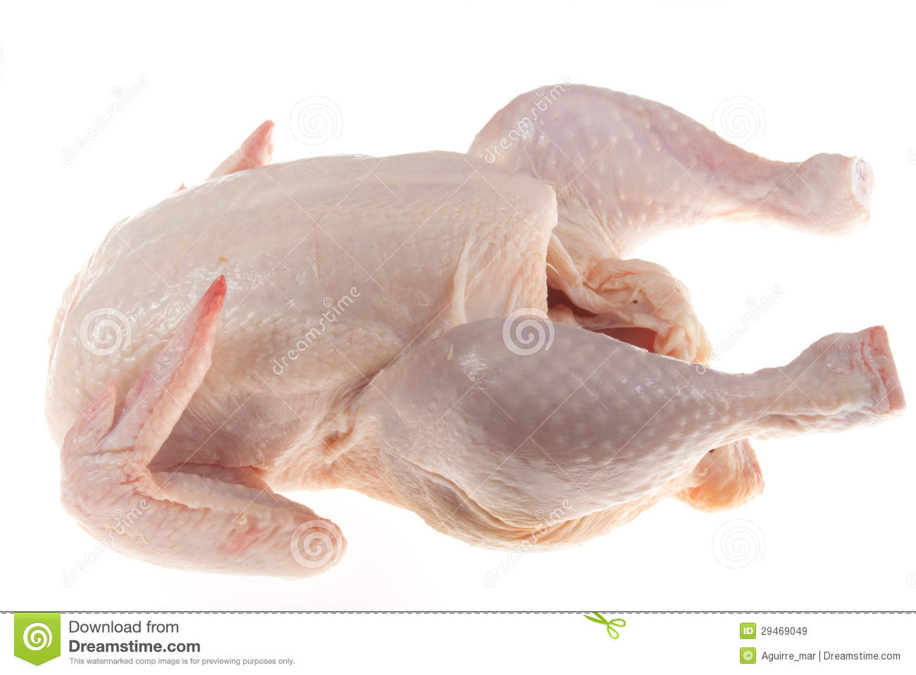 Raw Chicken Royalty Free Stock Images - Image: 29469049