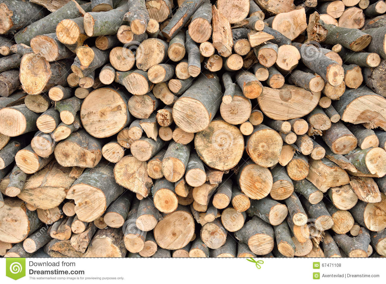 Raw Debarked Wood Logs In A Lumber Staging And Storage Yard. Raw Timber  Stacked