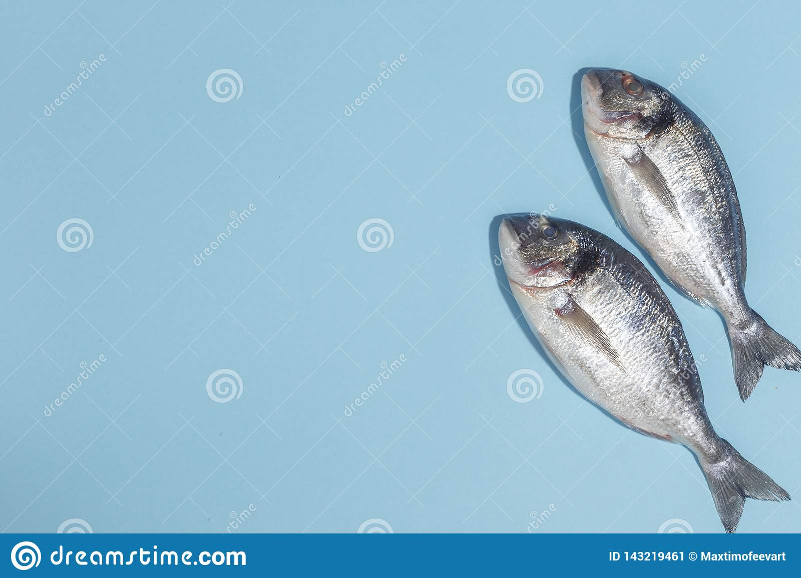 Raw dorada fish with spices, salt, lemon and herbs, rosemary on a ligth-blue background. Top view