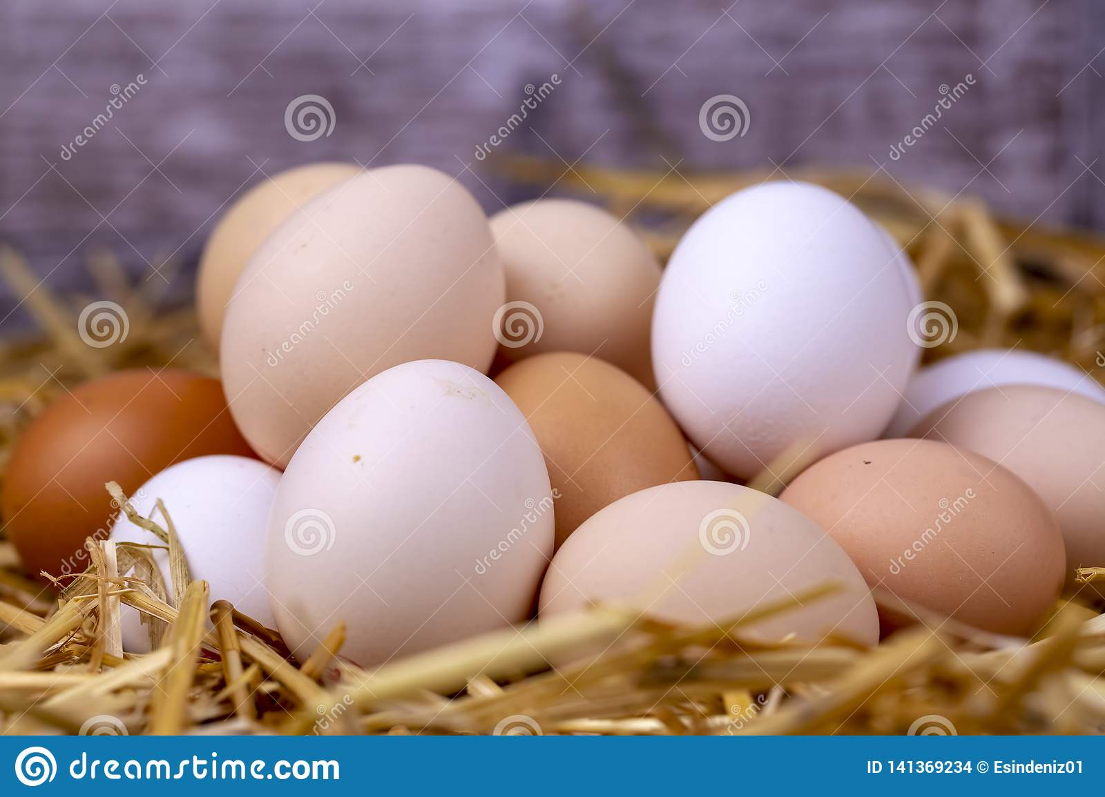 Raw eggs in dry straw. Food concept photo