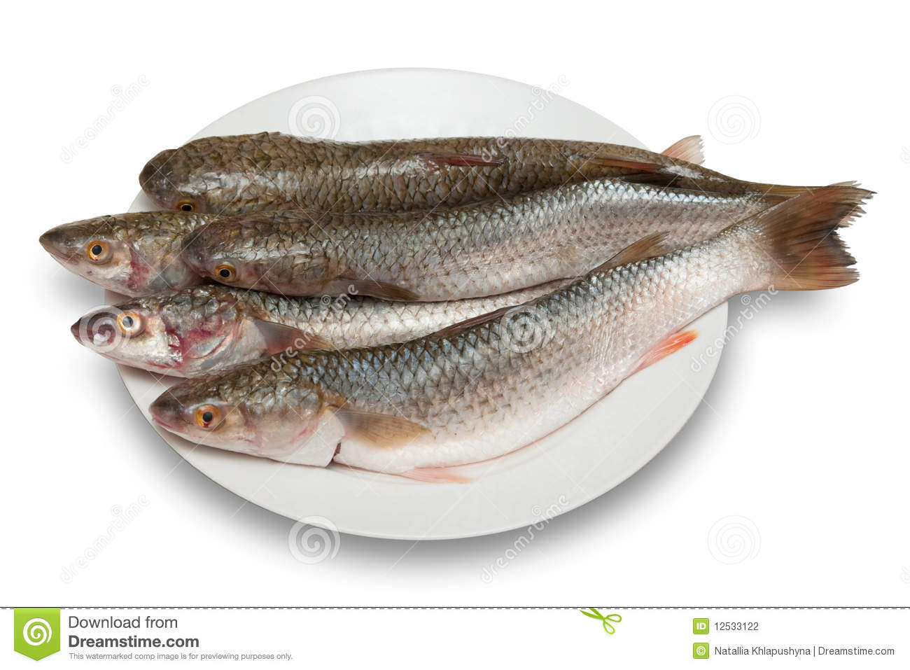 Raw Fish Stock Photography - Image: 12533122