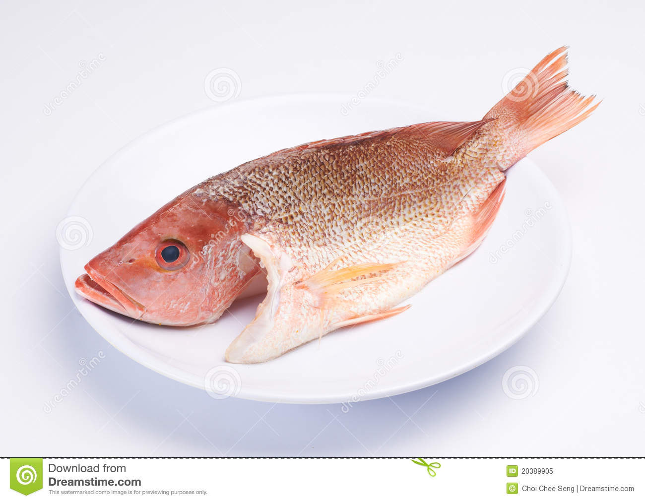 Raw fish stock image image of fresh food background for Photos of fish