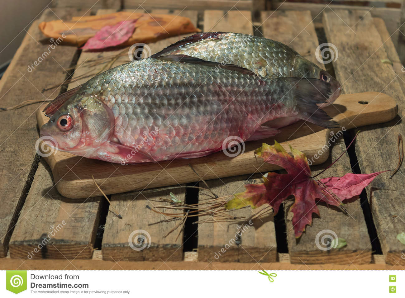 Raw Fish Carp On A Kitchen Cutting Board With Red Eyes Stock Image Image Of Fishing Gourmet 81695131