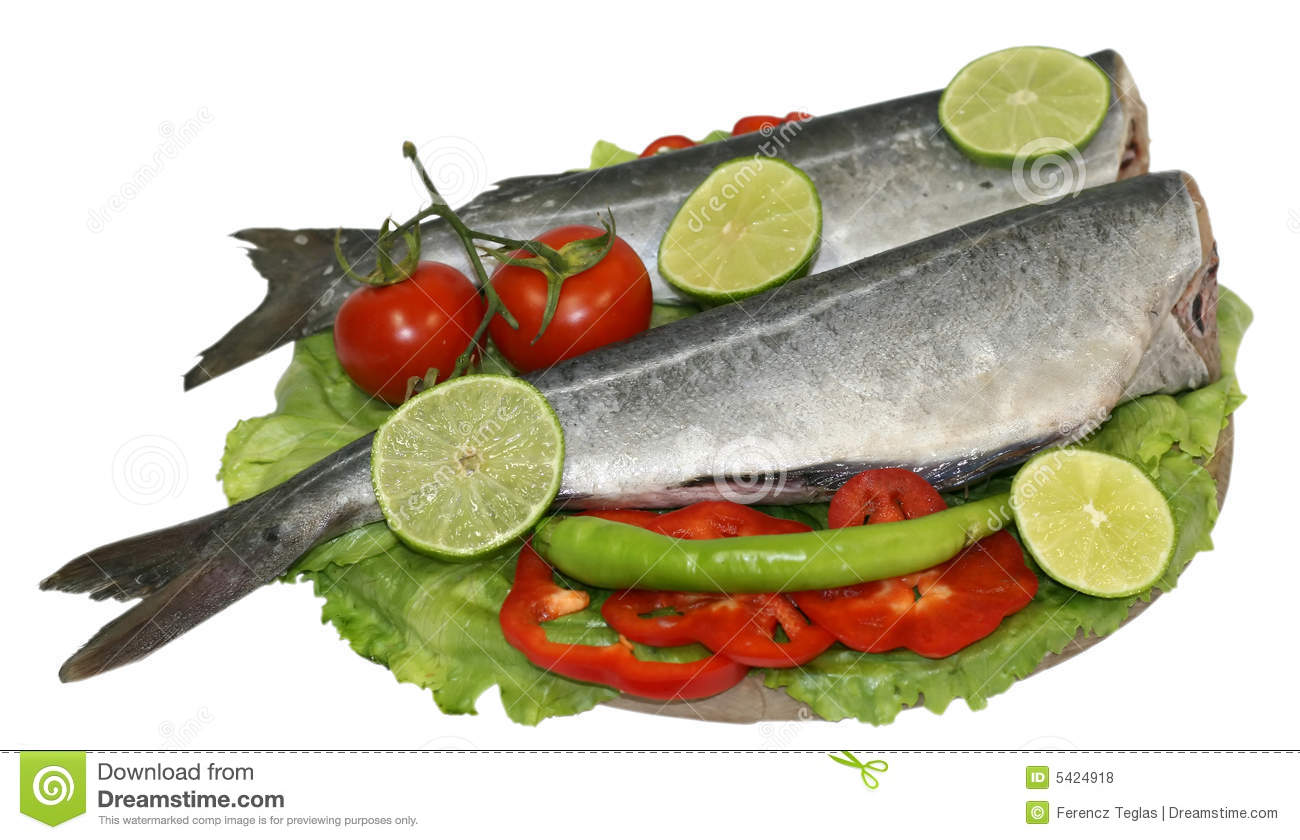Raw fish food plate stock photo image of olive tastefull for How to feed fish