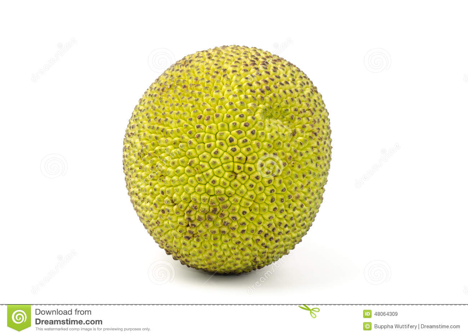 how to clean raw jackfruit