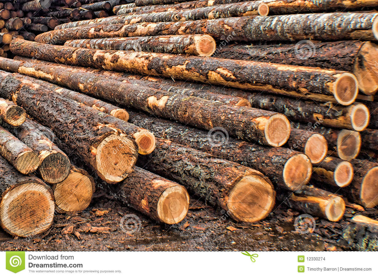 Raw materials stock photo image of building timber for Waste material images