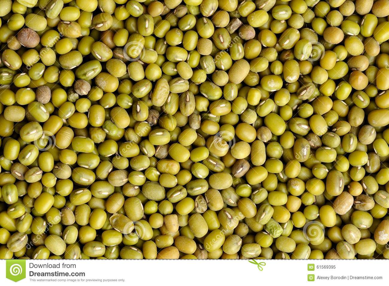 how to cook raw beans