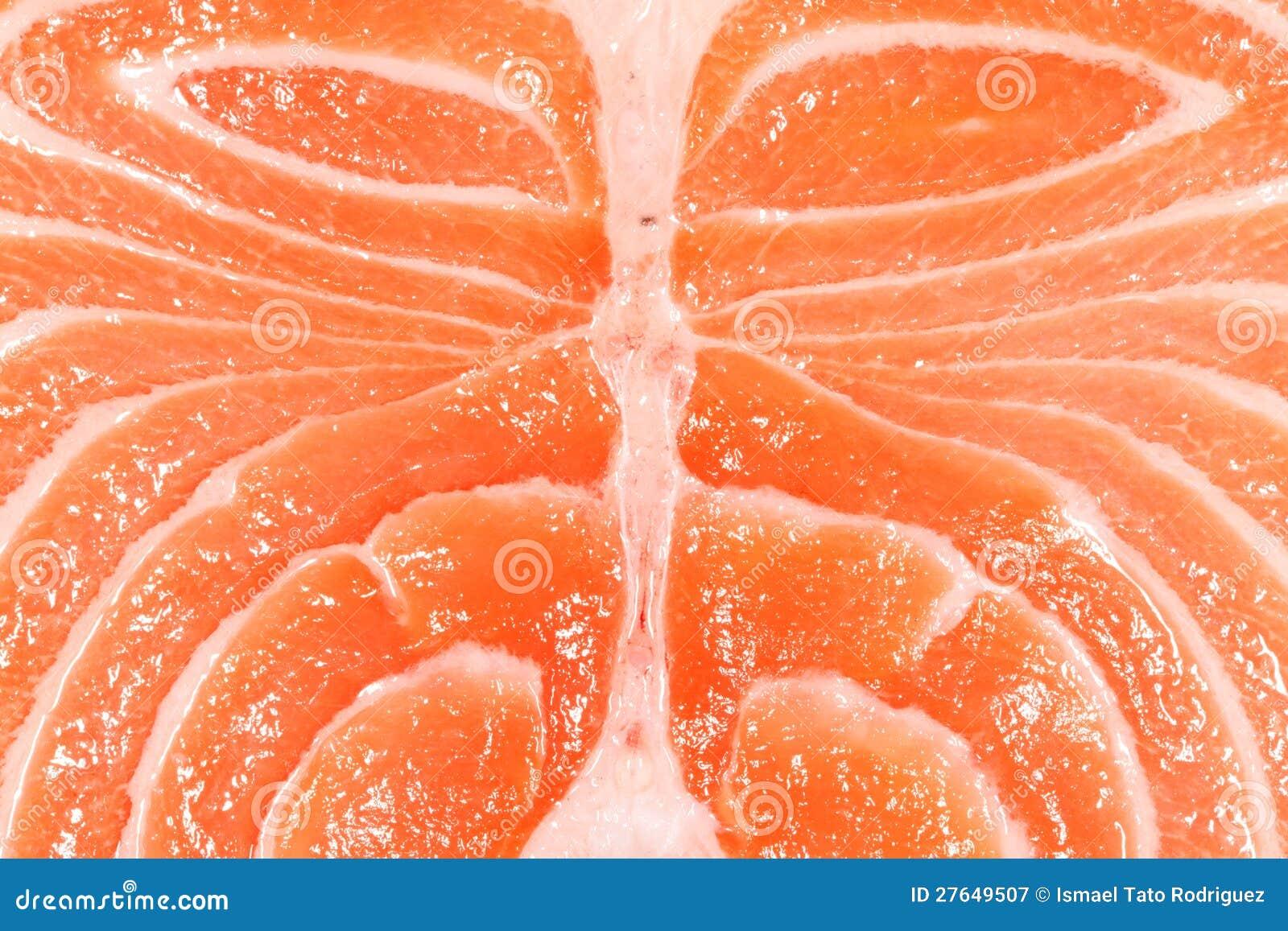 Raw Salmon Texture