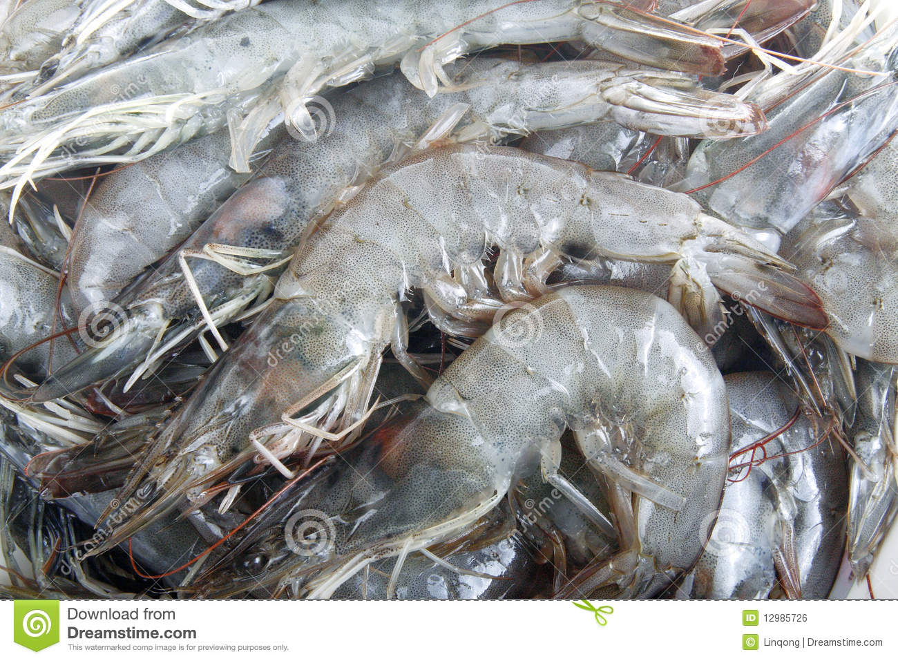 Raw Shrimp Royalty Free Stock Image - Image: 12985726