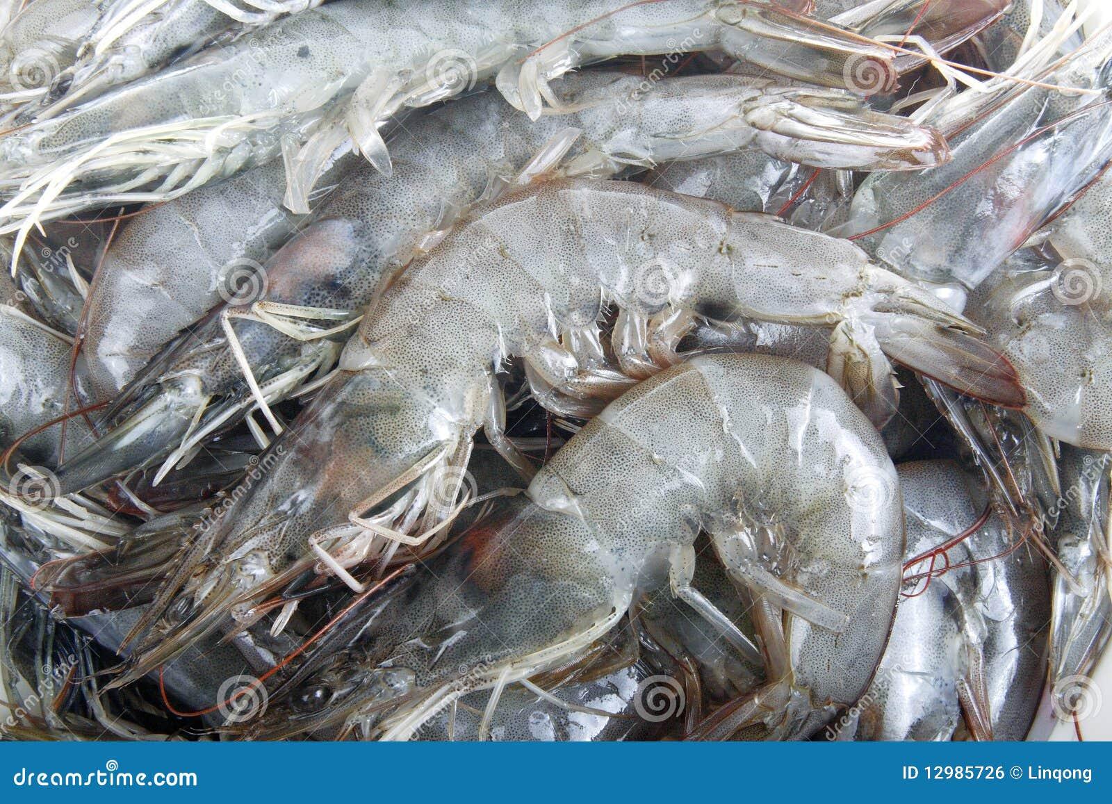 how to cook jumbo raw frozen shrimp