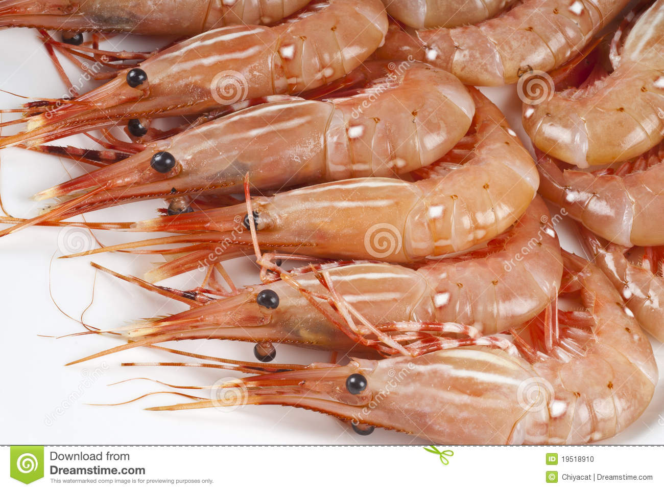 Raw Shrimp Stock Image Image Of Uncooked Food Health 7688101