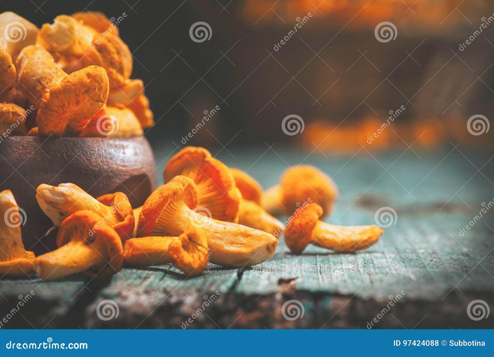 Raw wild chanterelles mushrooms in a bowl