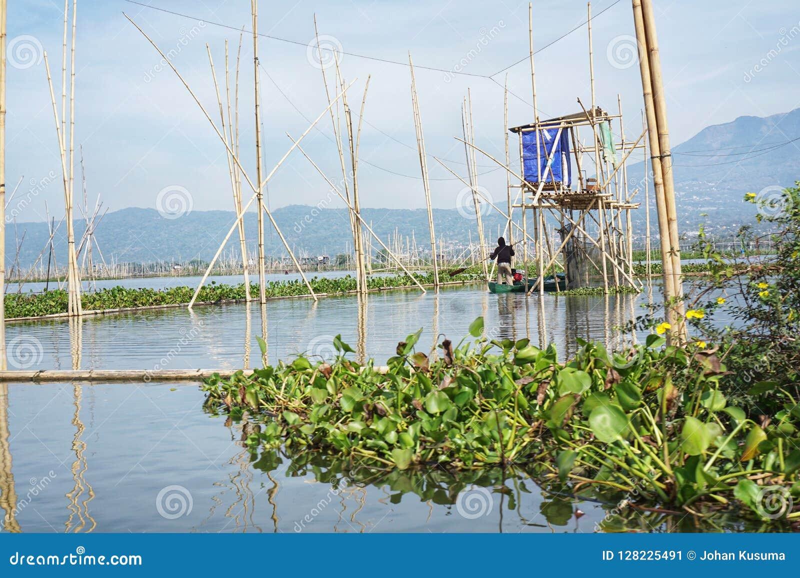 Rawa的渔夫写作湖,中爪哇省,印度尼西亚的