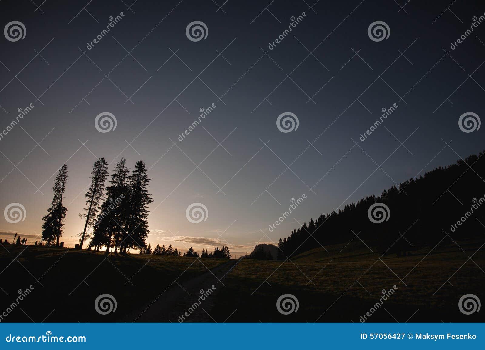 Ray van lichte onderbrekingen door de hemel bij solitaire zonsondergang en geraakte boom