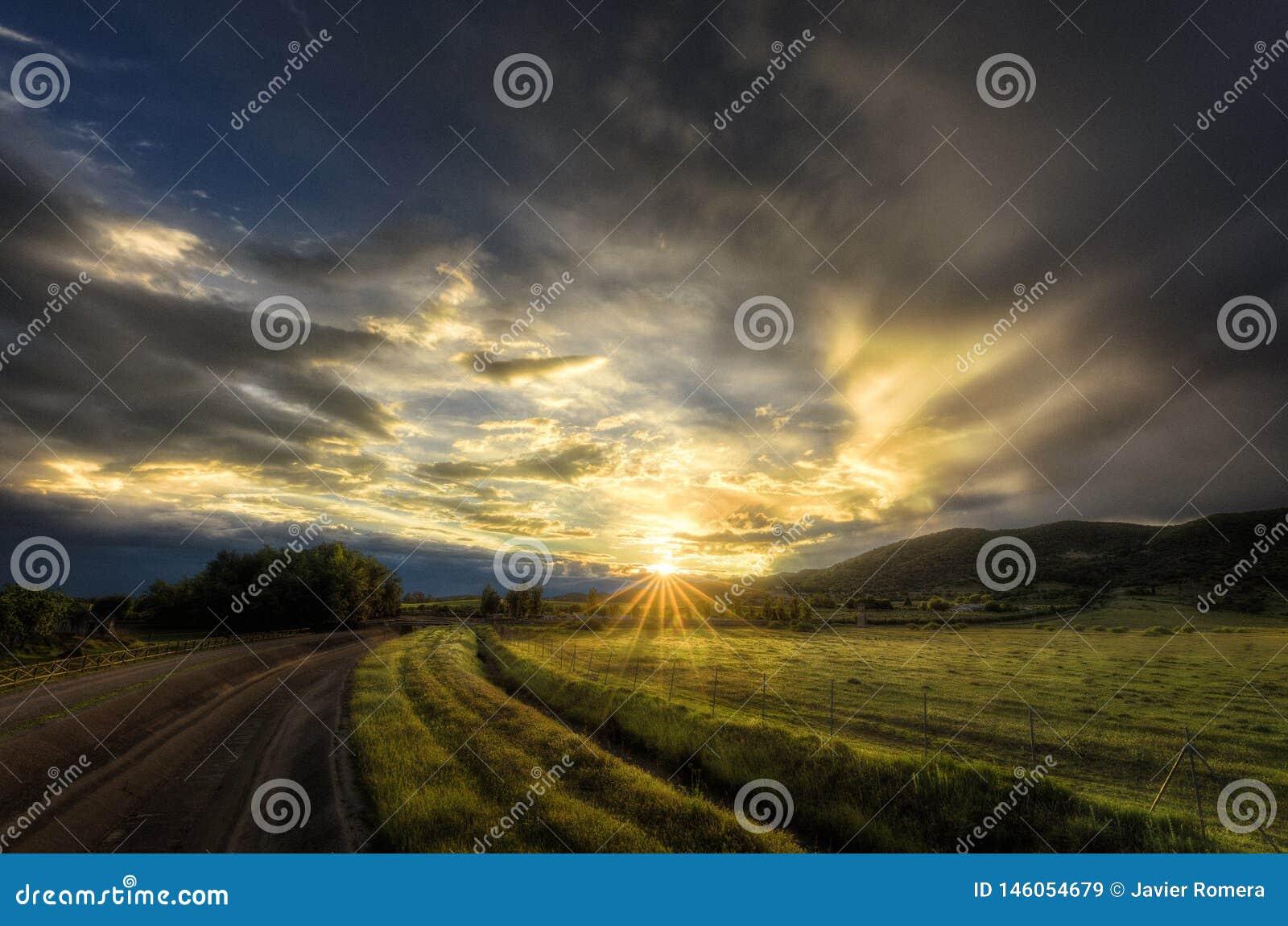Rayons de coucher du soleil dans un beau pré vert