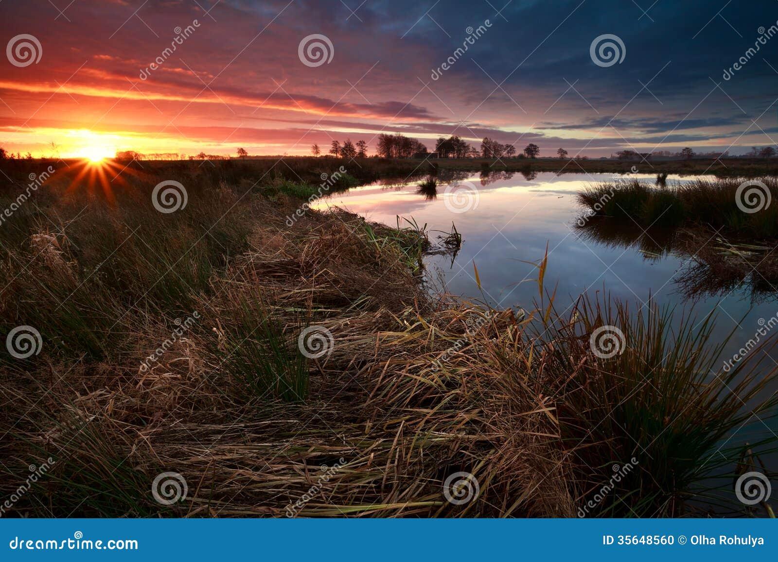 Rayons de soleil de lever de soleil au-dessus de marais en automne